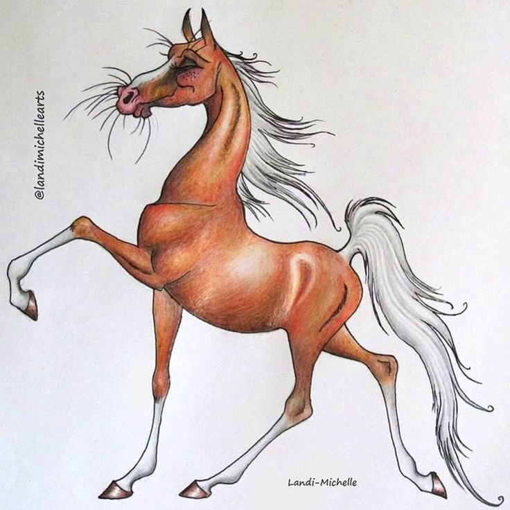 💕 Coloured Pencil Drawing of an American Saddlebred Horse by Landi-Michelle.   #landimichellearts #americansaddlebred #horsedrawing #illustration #characterdesign  #americansaddlebred #palomino #happiness  #unlimitedmoves