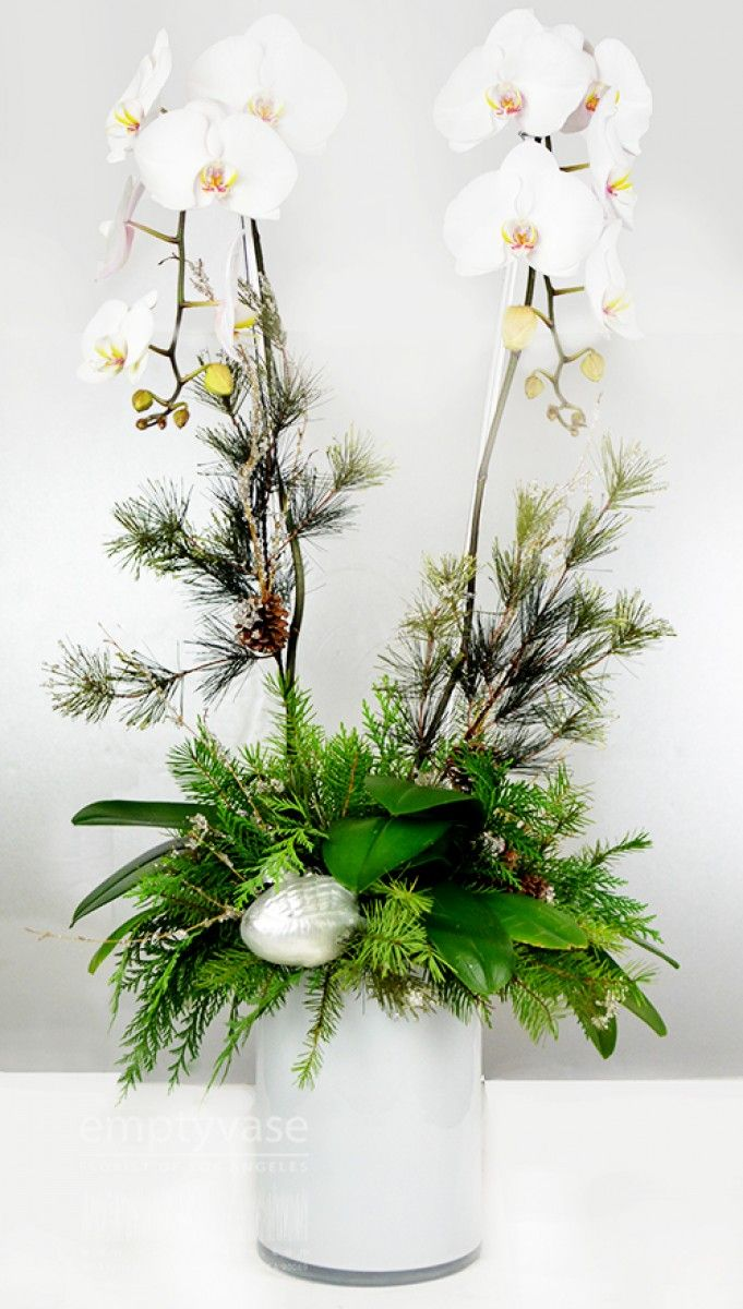 17 best images about florist on pinterest floral Christmas orchid arrangements