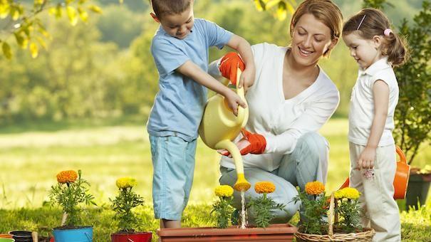 Szeretsz+kertészkedni?+Fontos+a+környezeted?+Tennél+is+érte? Pályázz,+hogy+nyerhess!+Pályázz,+hogy+segíthessünk! Pesterzsébet+Önkormányzata+a+kerület+Madarak+és+Fák+Napi+rendezvényeit+színesítve+környezetszépítő+versenyt+hirdet,+melyen+kerti+eszközöket,+virágokat,+facsemetéket+és+növényeket+kapnak…
