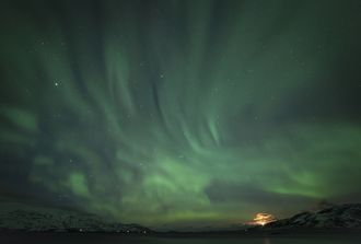 A lot of activity scattering across the sky above our head just out of TromsÞ, Norway.