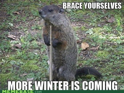 groundhog day meme | - groundhog day - All Your Memes Are In Our Base - internet memes ...