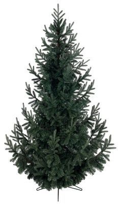 Christmas Trees : Everlands Serbian Blue Spruce Artificial Tree 977 tips 6.8 ft. H Green