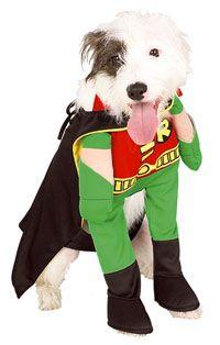 large dog robin dog costume dog costumes