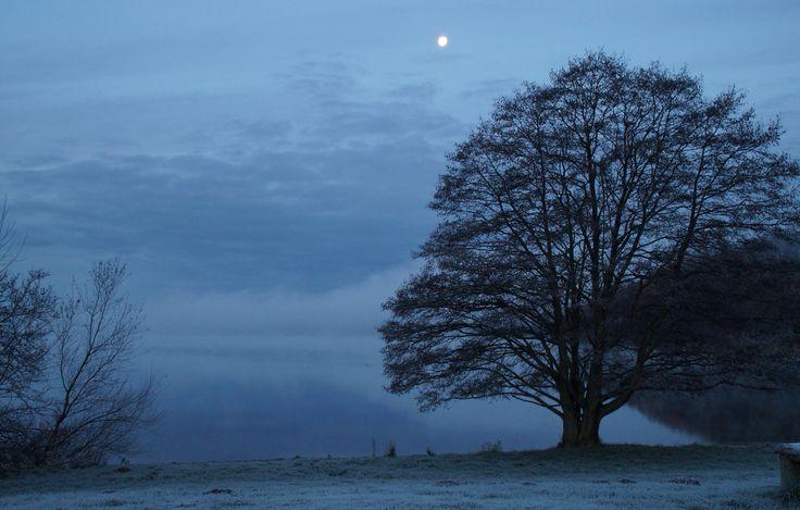 Vintermorgen ved Knudsø