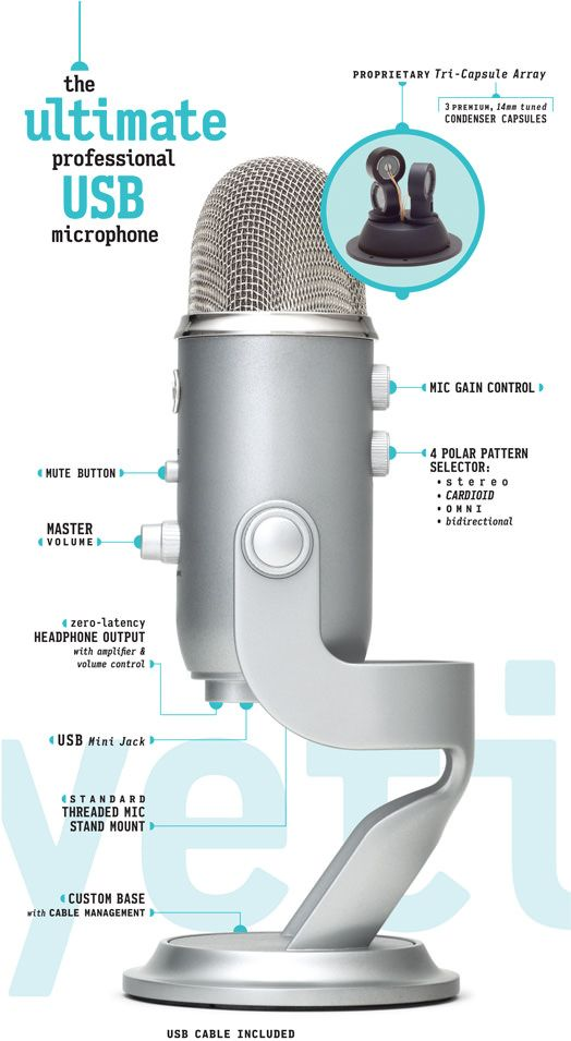 cool micro:  >>Yeti<< by Blue Microphones:  The Ultimate Professional USB Microphone •  highly adjustable • $90-100
