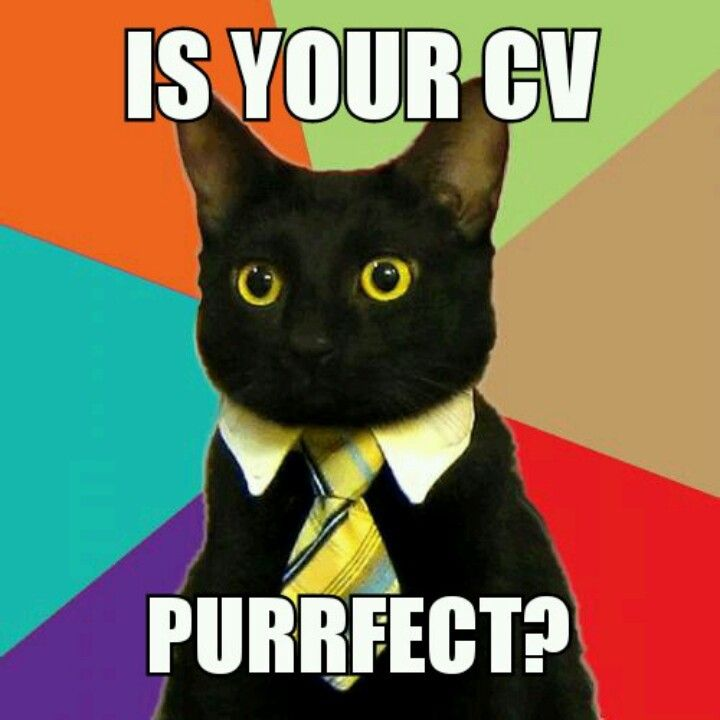 Cv writing service us manchester
