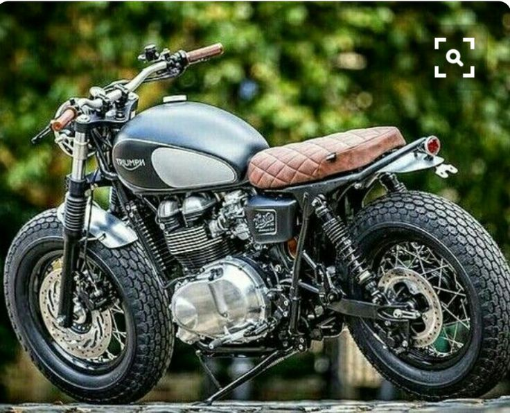 Triumph in the woods