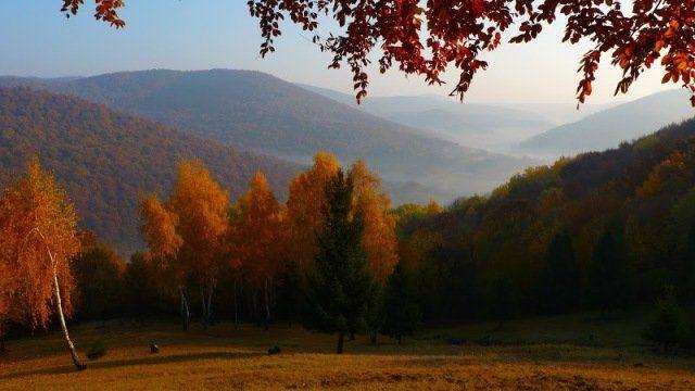 Zemplén hills