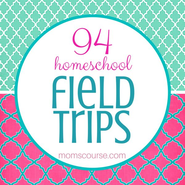 Plan Field Trips, and Work Your Way through the ABCs When the kids were younger, one of my favorite breaks from the daily homeschool…