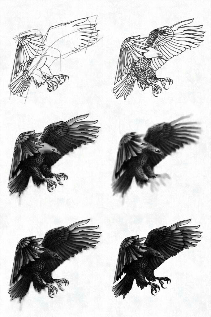 Pingl par susan carrell sur how to draw eagles pinterest - Dessiner un faucon ...