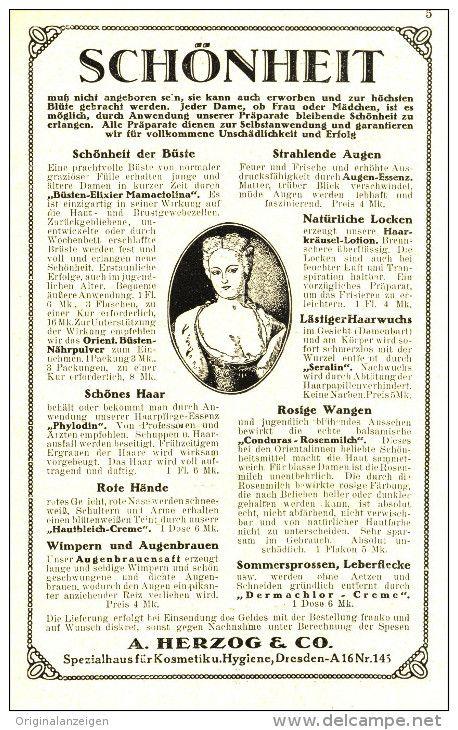 Original-Werbung/Anzeige 1924 : SCHÖNHEIT / KOSMETIK HERZOG DRESDEN ca . 100 x 160 mm