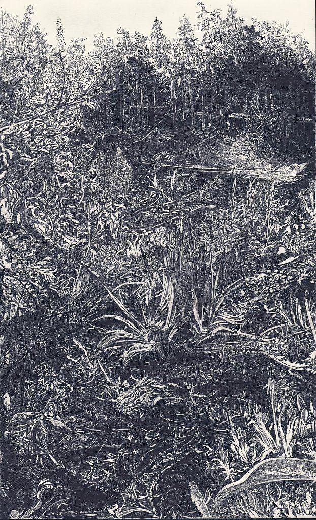 Земля - Изобразительное искусство - Карандаш, ручка, фломастер.