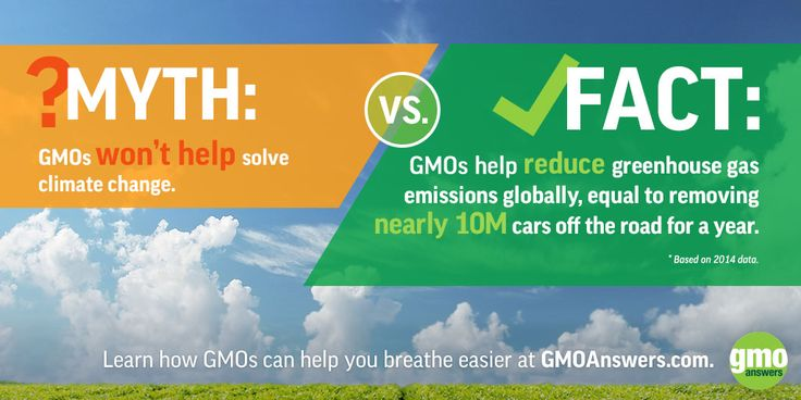 Learn how GMOs can help you breathe easier at GMOAnswers.com