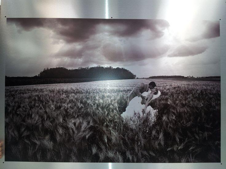 photomediadecor - Printing - High quality on aluminum