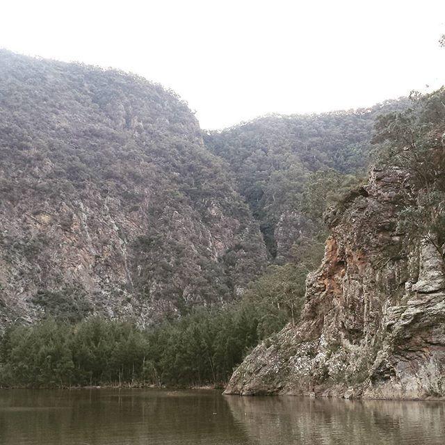 The mighty Shoalhaven River #shoalhavengorge #bushwalking