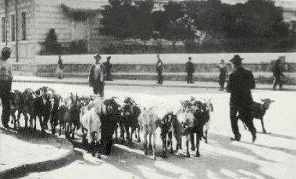 1902 στην οδό Σταδίου