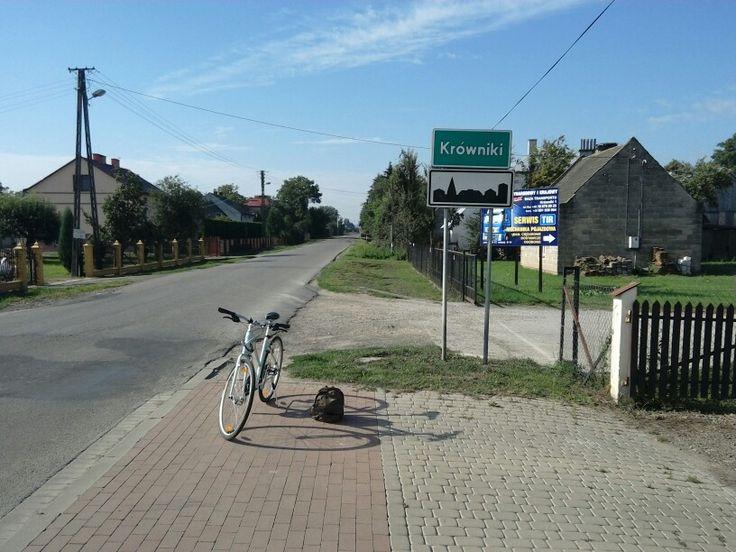 mój rower