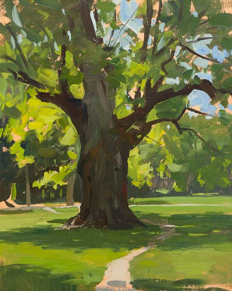 Plein air landscape painting of the old oak tree in Maksimir park, Zagreb.