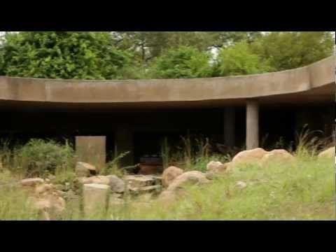 Sabi Sabi: Earth Lodge