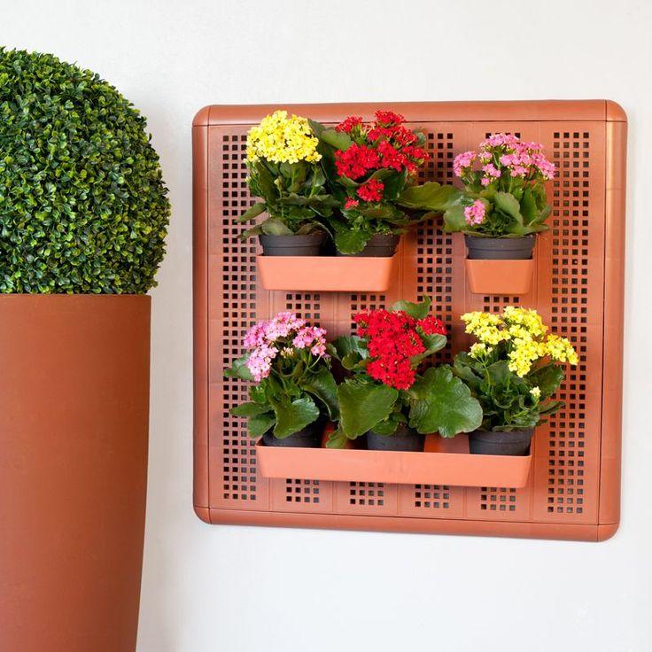 Kit Paretella Eco 60  Paretella è il porta tutto ideale ricreare un giardino da parete. Può essere usato per piccoli fiori, piante aromatiche, verdi o grasse. Può essere utilizzato sia all0'interno che all'esterno su terrazze e balconi