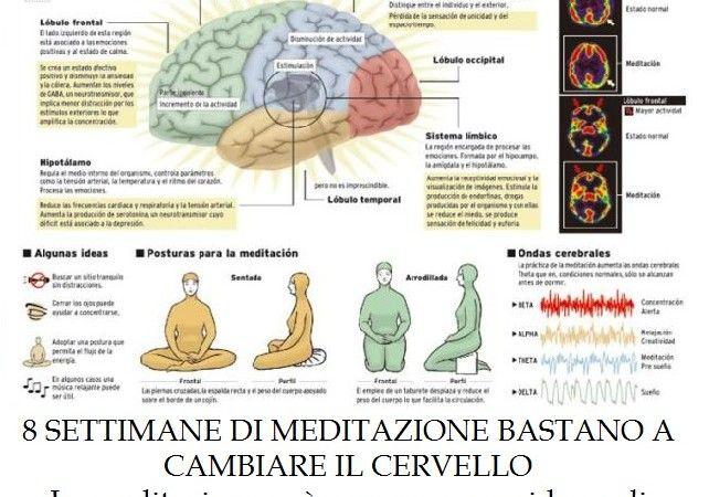 8 settimane di meditazione bastano a cambiare il cervello