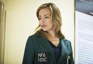 No More Walkerson? 6 Things to Know About Covert Affairs Season 5