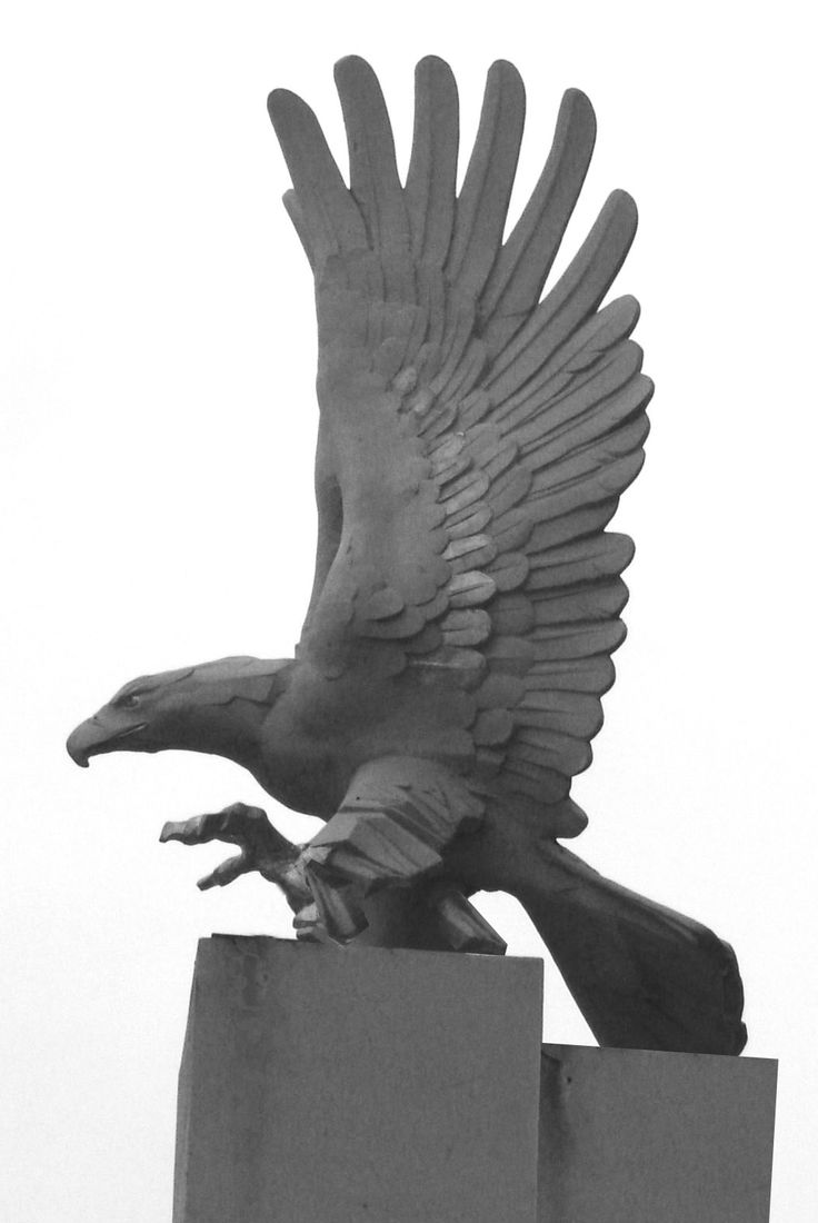 Eagle - author Jakub Blazejowski