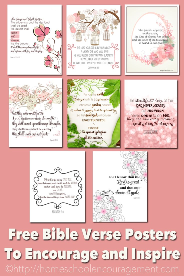 Bible Verses to Encourage and Inspire Homeschool Moms Free Printable - PIN