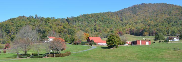 Madison County Virginia Retreat for sale. Rapidan Ranch. Visit GayleHarveyRealEstate.com for more
