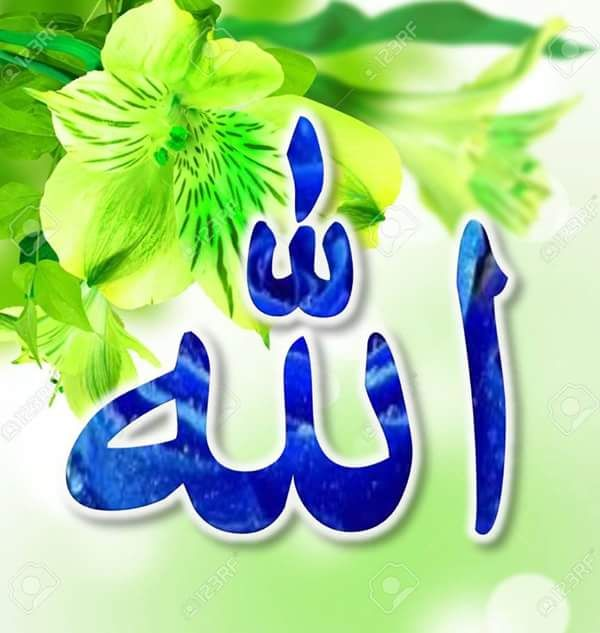 DesertRose,;,Allah Jalla jalaluhu,;,