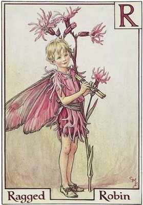 Ragged Robin, by Cicely Mary Barker. Her creations were strongly influenced by the works of Kate Greenaway, and J. M. Bairre's book, Peter Pan. The Victorian era's enthusiasm for fairy stories played a big role in her artwork as well.