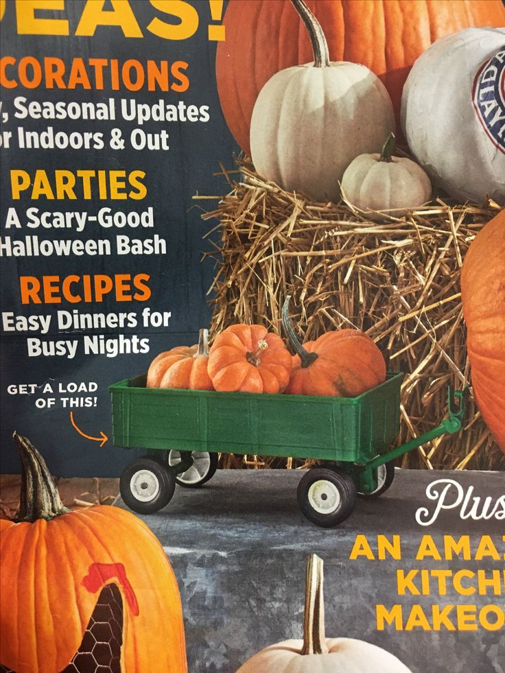 Pin by Shelly Neri on Fall Decor Easy dinner recipes