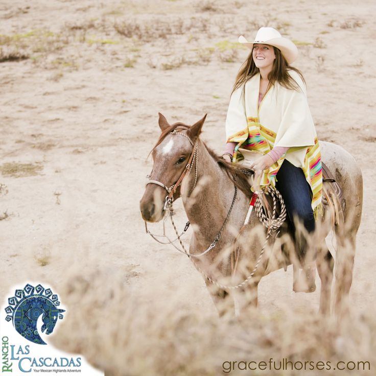 "Join us on a soul-enriching journey, ""Horses: Elixir For The Soul""  in March. Three retreats  filling fast. Reserve your spot now! http://rancholascascadas.com/horses-elixir-for-the-soul/"