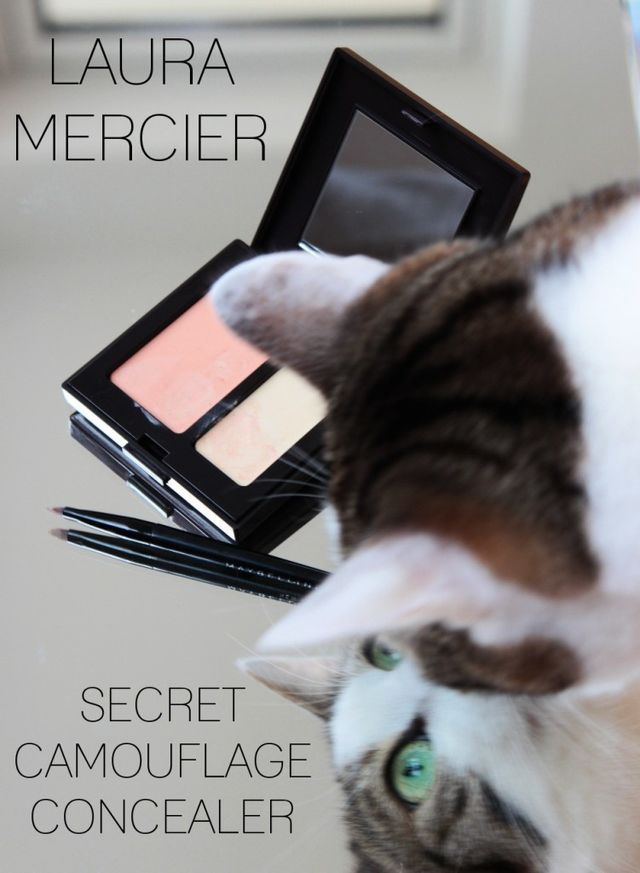 Laura Mercier Secret Camouflage Concealer Review