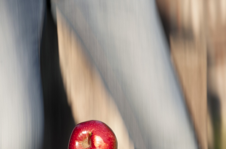 Panning - The Red Apple