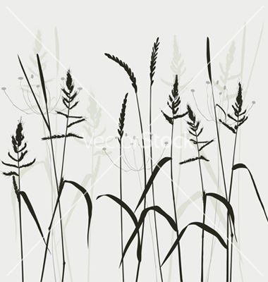 wild grass vector - Google Search