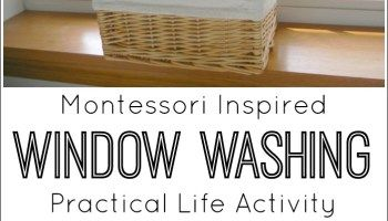 Montessori Inspired Window Washing Activity