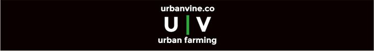 3 Urban farming companies on the fast track to success