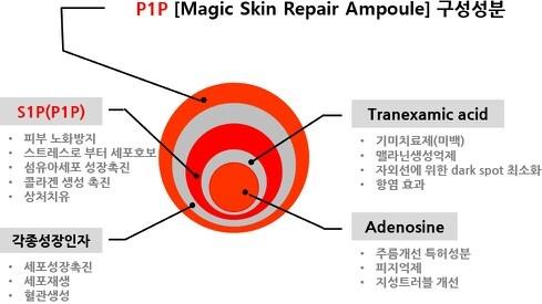 P1P 구성 성분