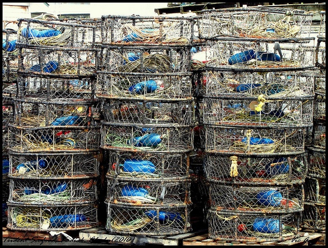 Dungeness Crab Traps  Kodiak, Alaska - May 29, 2010  In the Trident Seafood Company facility, these traps are stacked.