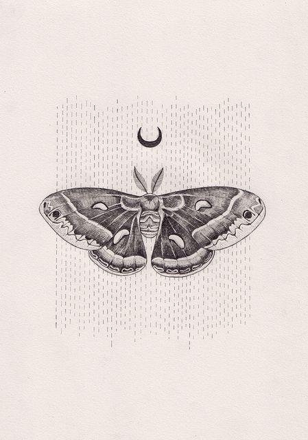 stick and poke moth - Google Search