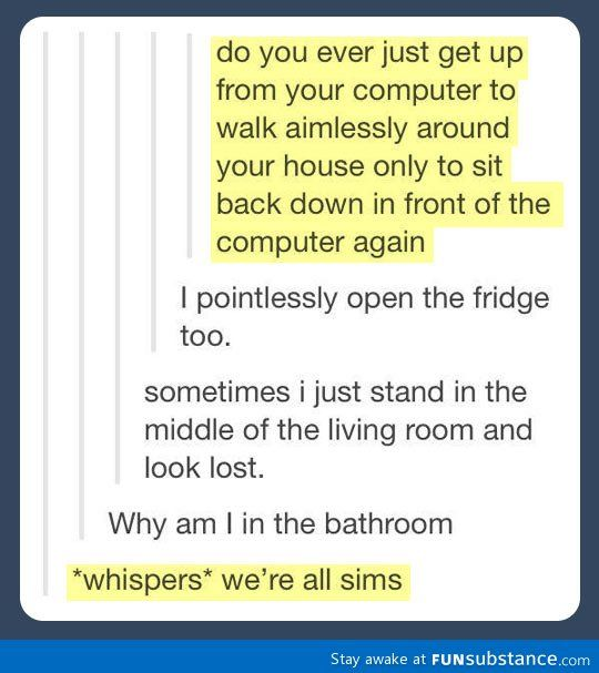 we're all sims