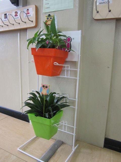 Reutilitzant una prestatgeria de ferro per a posar les plantes del aula.