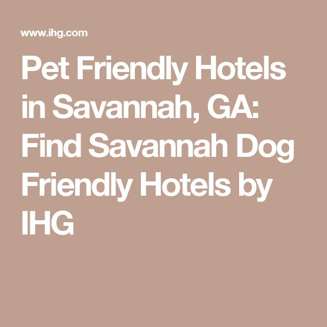 Pet Friendly Hotels in Savannah, GA: Find Savannah Dog Friendly Hotels by IHG