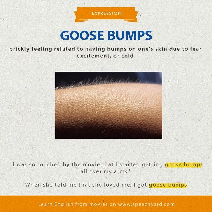 Goose = ganso, oca Bump = Hinchazón, chichón Goose bumps = Gooseflesh = carne de gallina