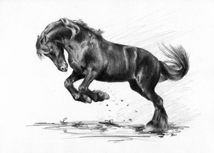 Brykający koń fryzyjski