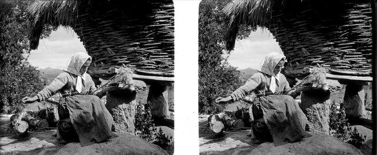 Imaxes estereoscópicas (1930-1936)