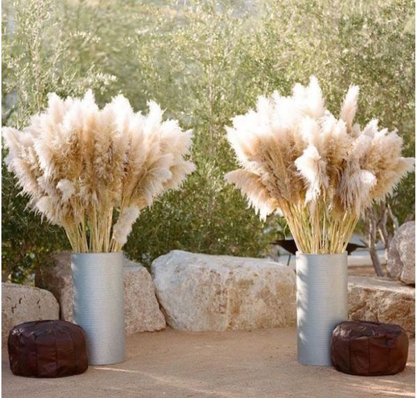 Pourquoi l'herbe de l. a. Pampa est l. a. nouvelle tendance florale des mariages
