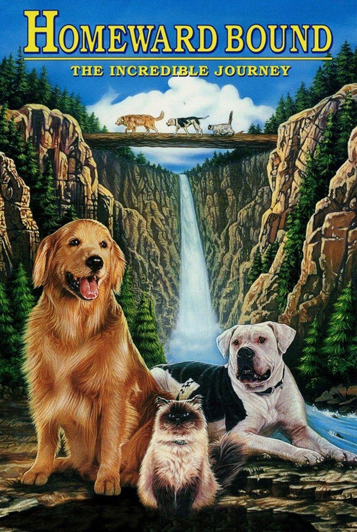 Homeward Bound The Incredible Journey (1993) Disney