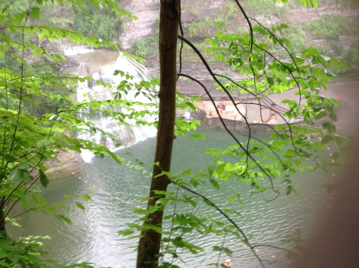 We swam here.  Finger Lakes, NY